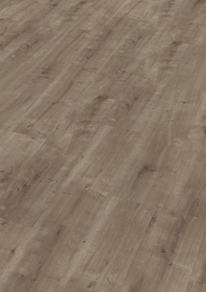 Meister Laminat LC 55 Fine Oak 6672